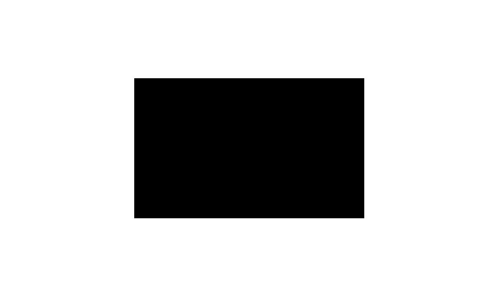 LG telefonų taisymas